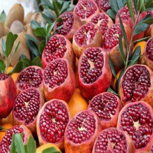 Meyve-Fidanları-22